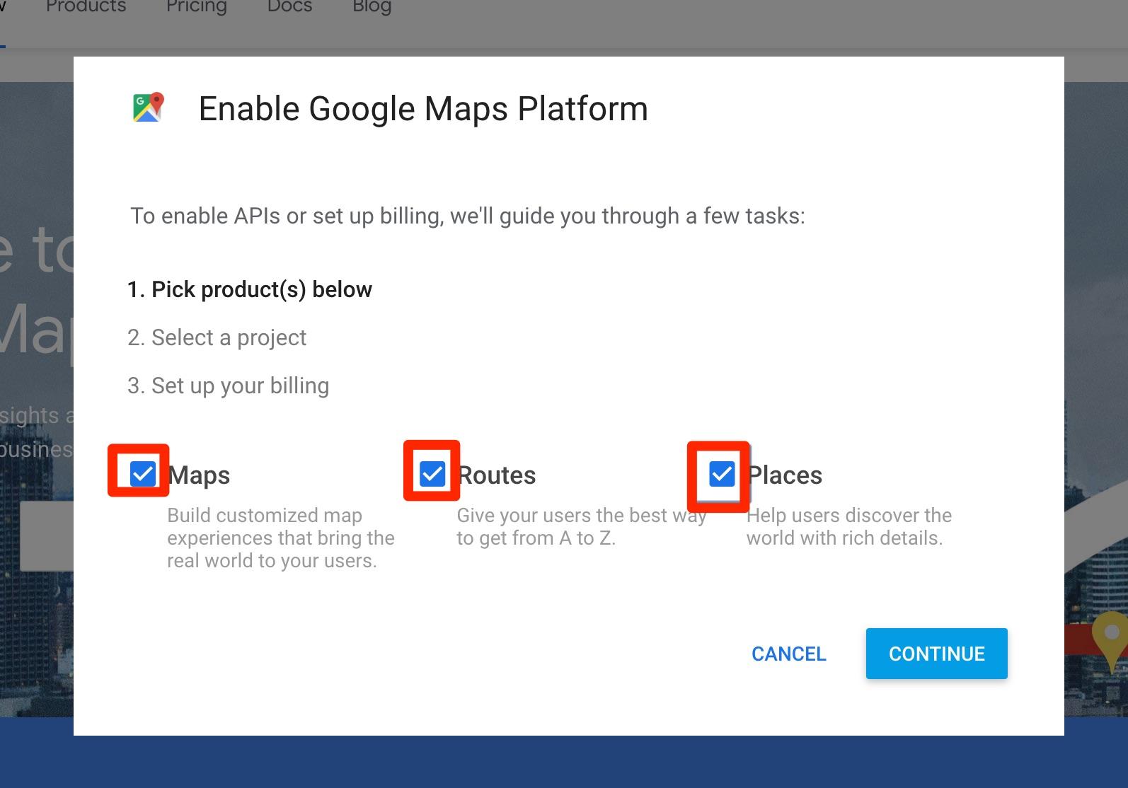 Google maps api options